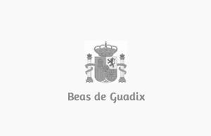 Ayuntamiento de Beas de Guadix (Granada)